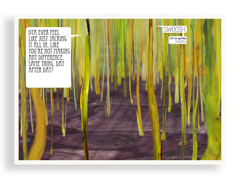 Print of Colourful Comic Postcard of Grasses Having Existential Angst by Bourdon Brindille